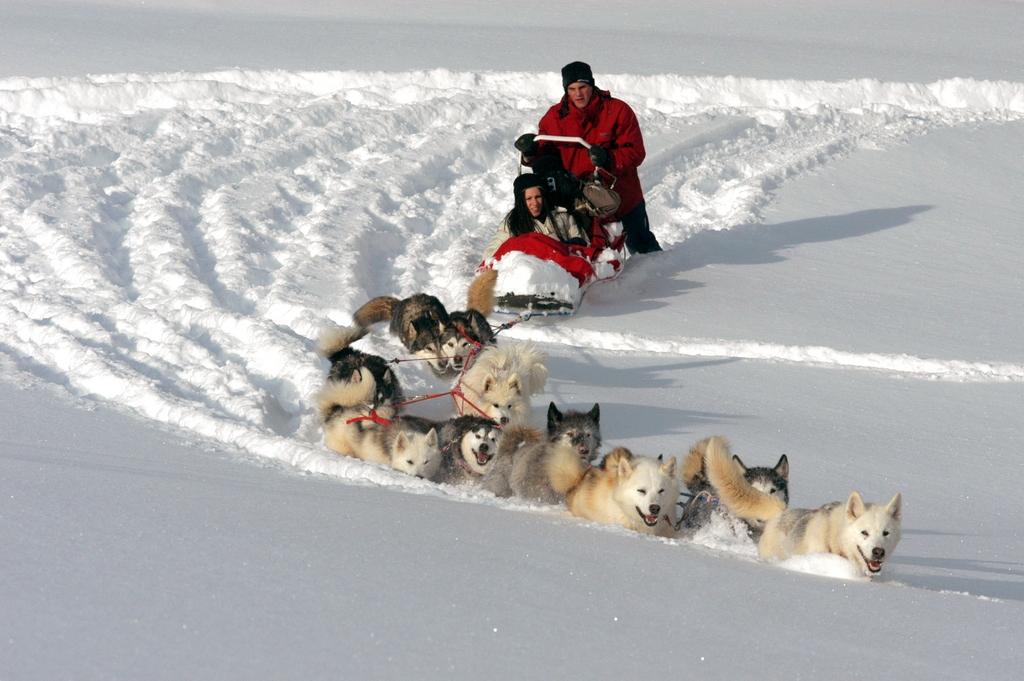 Office de tourisme de malbuisson les lacs a proximit for Balade chien de traineau doubs